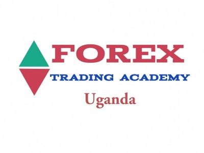 Online Forex trading education platform
